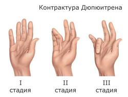 [Image: 107.png]